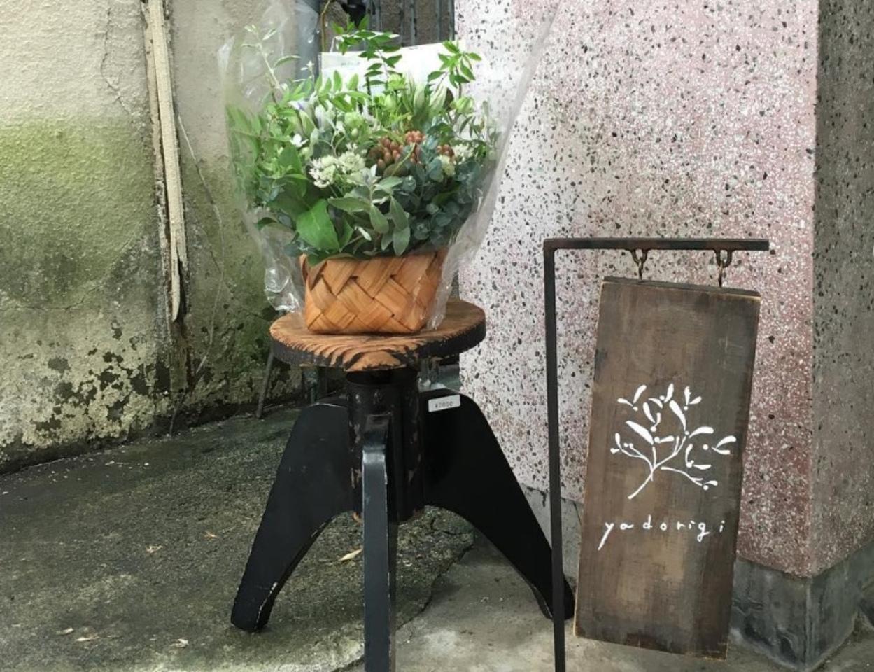貼り絵と帽子と古道具のお店...前橋市千代田町に『ヤドリギ』プレオープン。