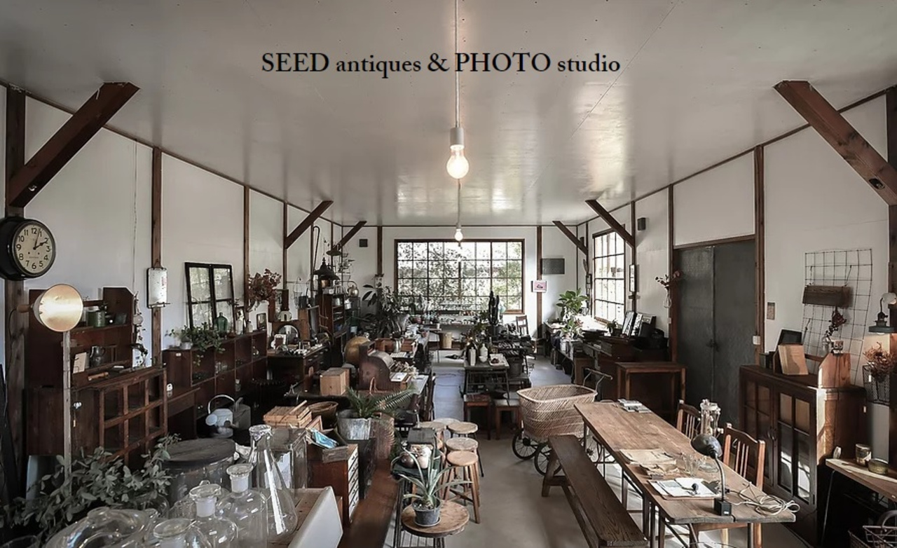 【 SEED 】antique & photo studio(京都府亀岡市)