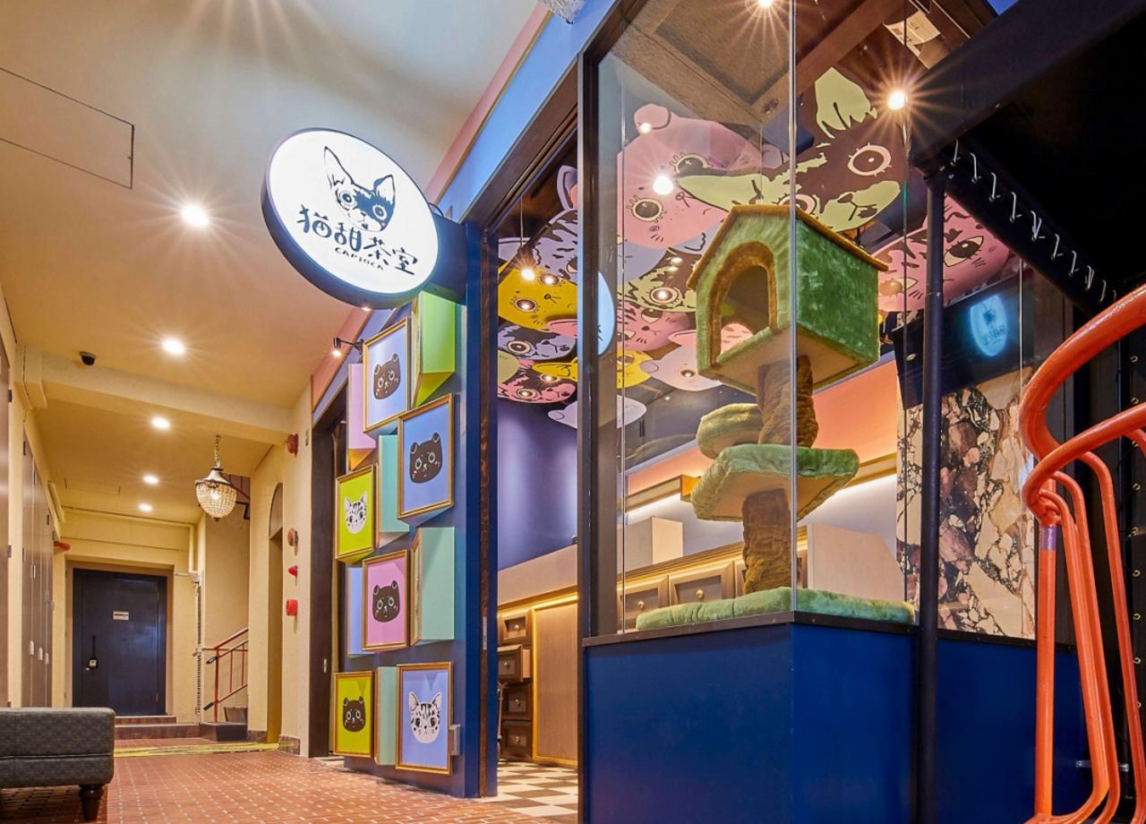 大阪のアメ村に本格産地直送台湾茶タピオカ専門店「猫甜茶室カピオカ」が8/30オープンのようです。