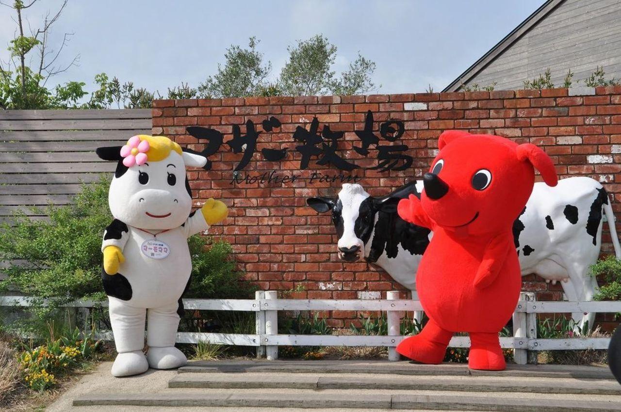 花と動物たちのエンターテイメントファーム...千葉県富津市田倉の「マザー牧場」