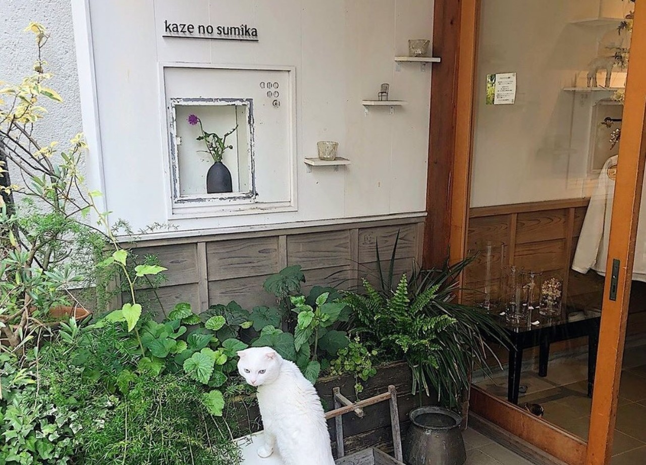 【 kaze no sumika 】洋服・雑貨(奈良県奈良市)