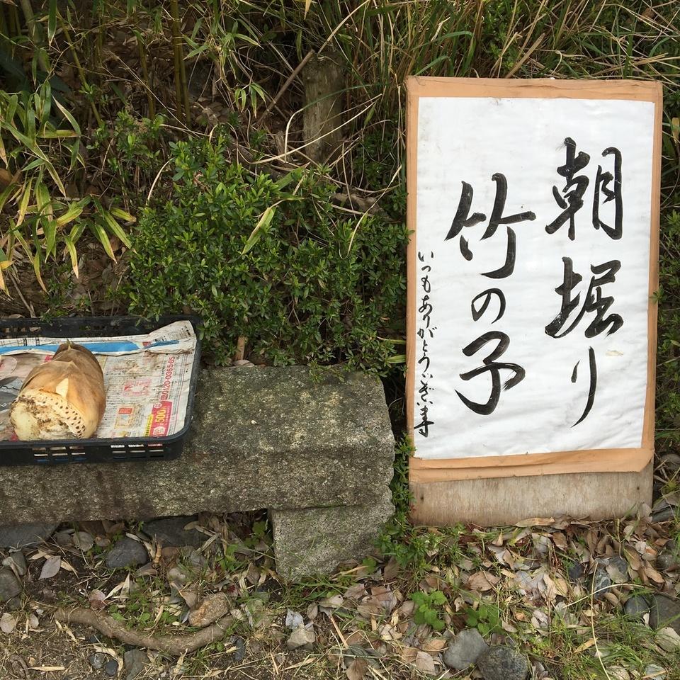 [栗東駅]朝堀り竹の子
