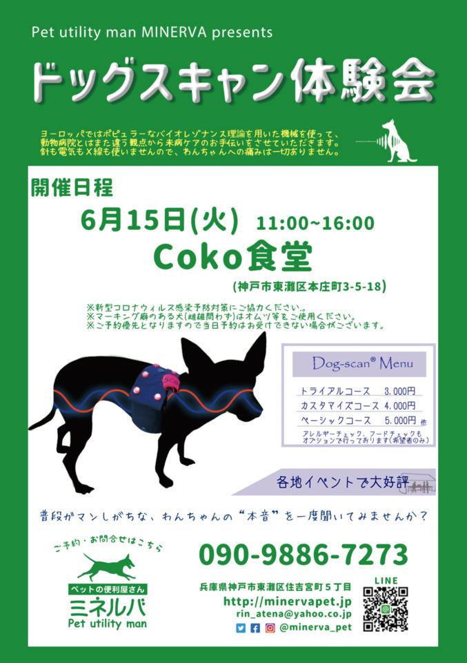 【満員御礼】ドッグスキャン体験会 in 東灘区