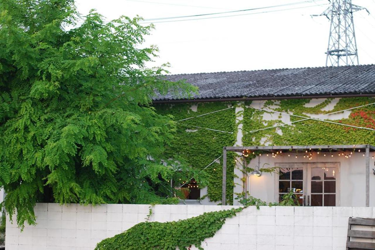心と体に優しい野菜たっぷりのお料理...大阪府岸和田市摩湯町の「ウカファームテーブル」