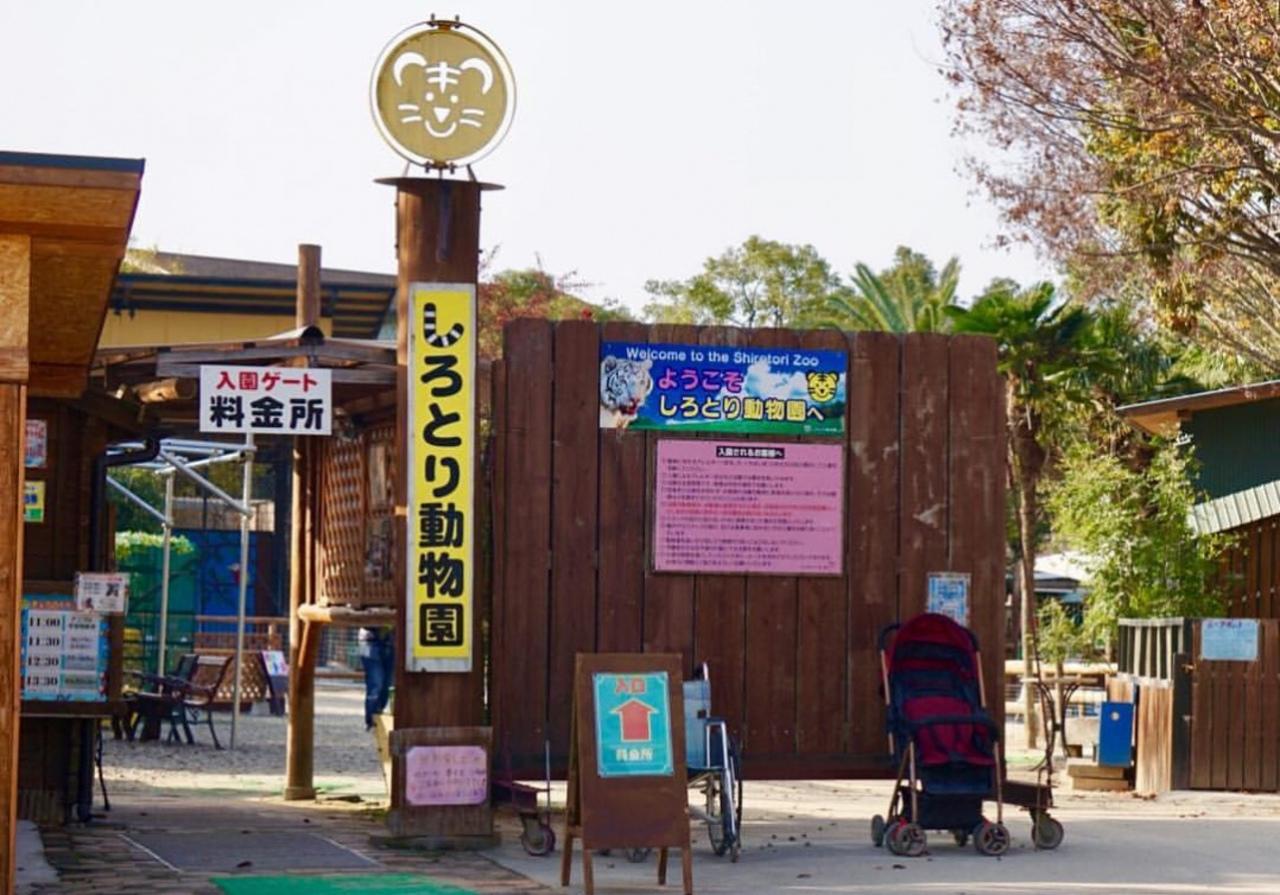 自由すぎる動物たちに会える動物園...香川県東かがわ市松原の「しろとり動物園」