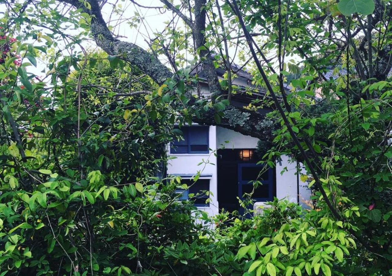 空間装飾とドライフラワーと喫茶。。福岡県筑紫郡那珂川町埋金の『花と珈琲ホキ』