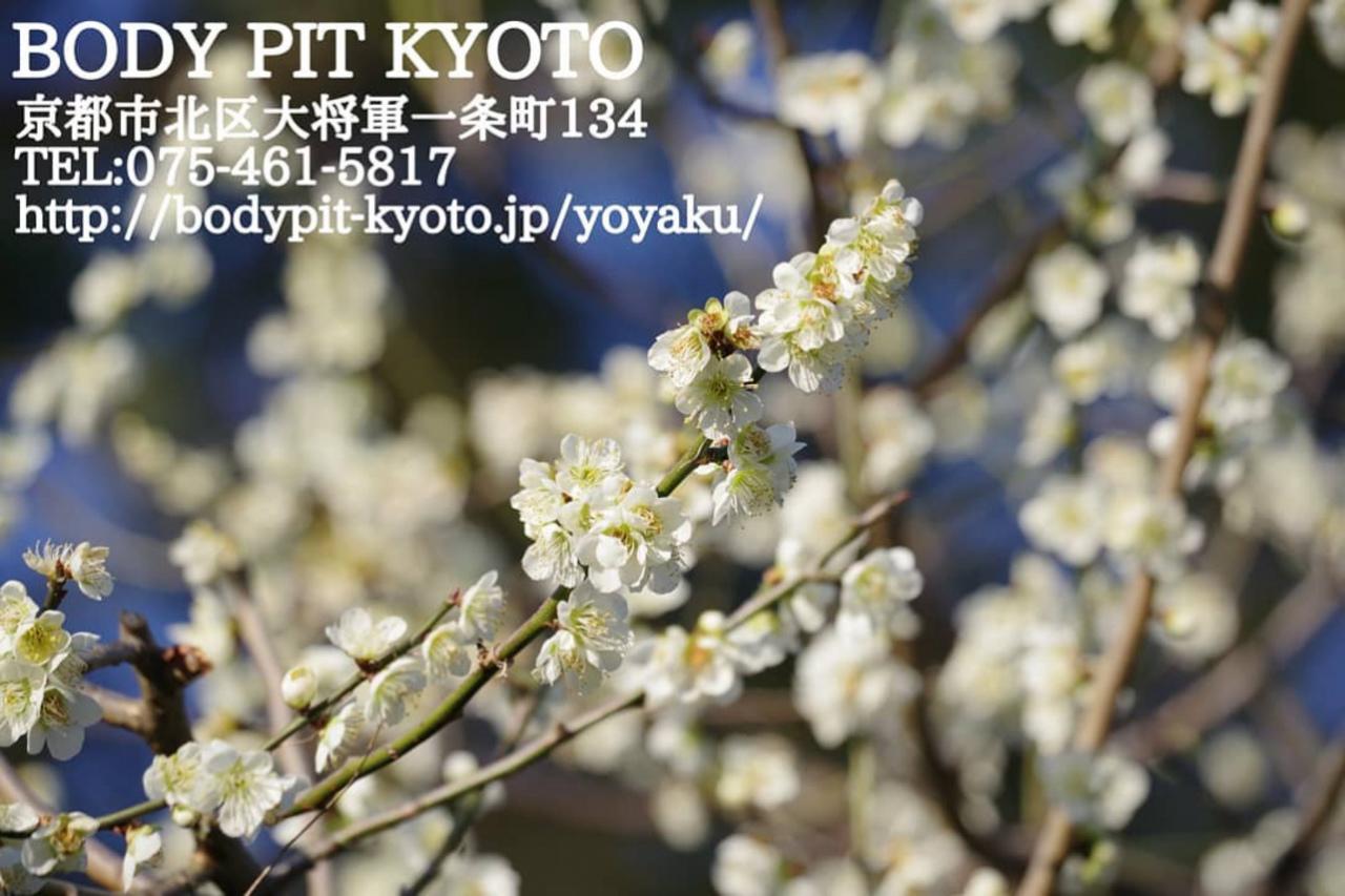 第一回 京都北会開催しました!