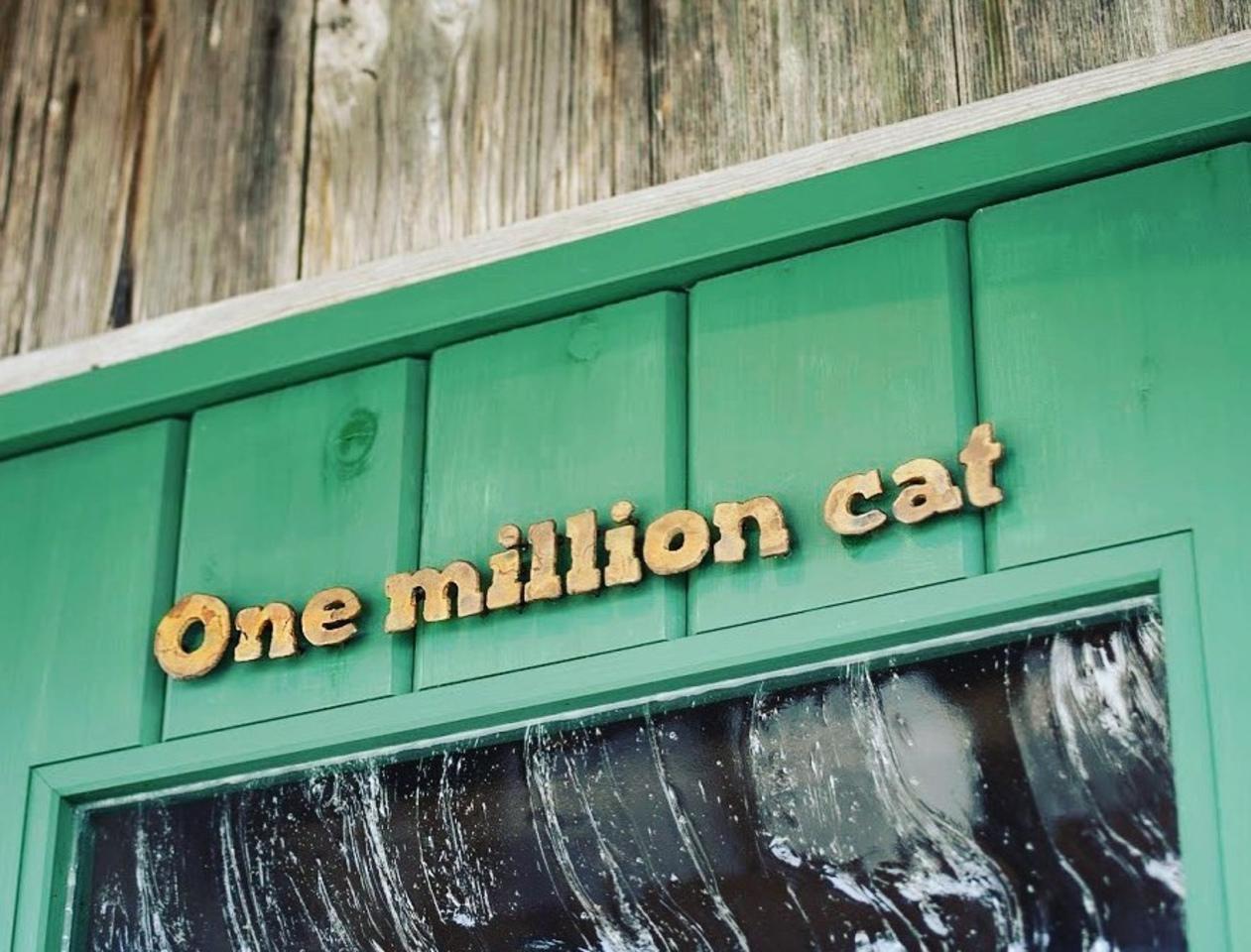 【 One million cat 】帽子のセミオーダー屋(滋賀県近江八幡市)9/3オープン