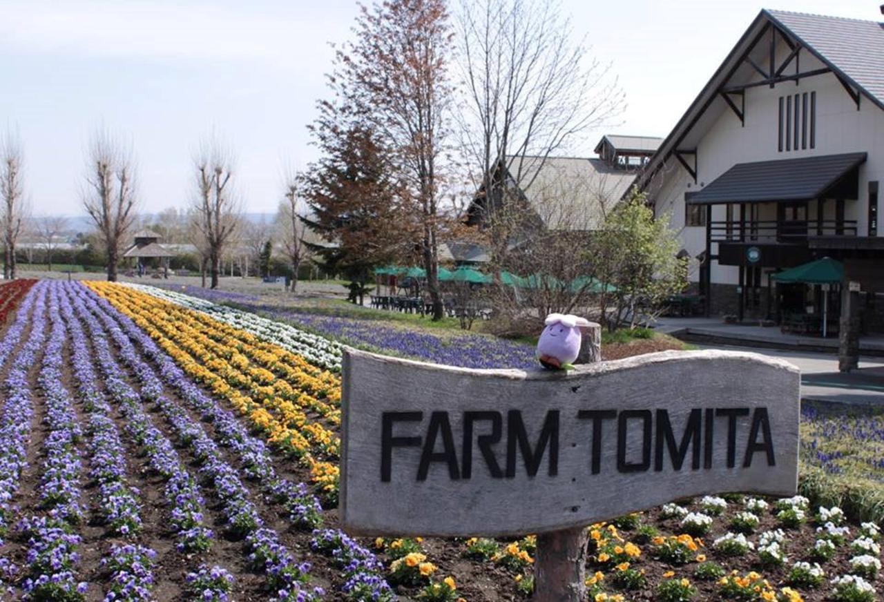 入園無料の日本最大級ラベンダー畑...北海道空知郡中富良野町の「ファーム富田」