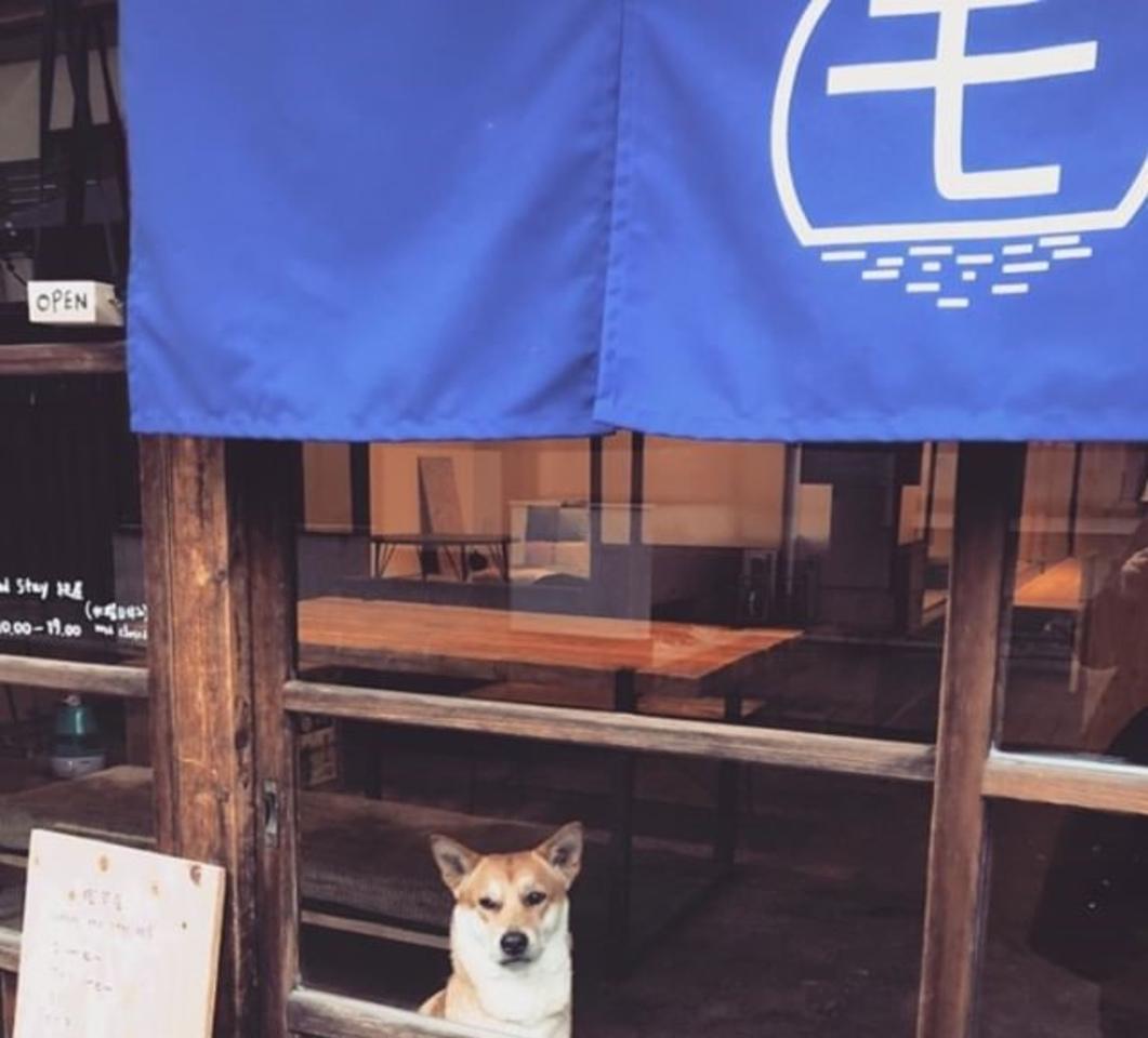 古民家を改装...静岡市駿河区用宗3丁目に『コーヒー&ステイ 桃屋』オープン