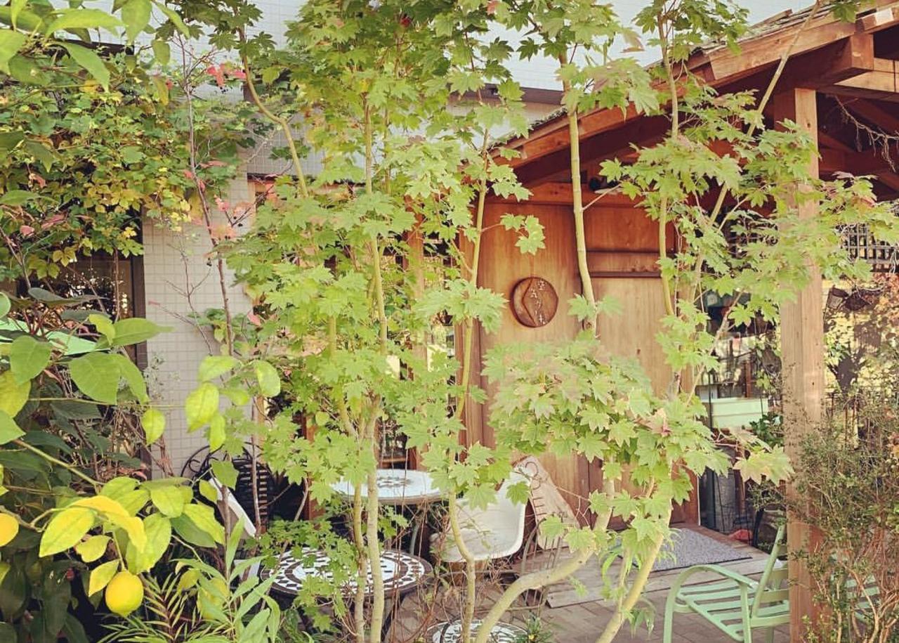 空気のような存在に...奈良市高畑町の『空気ケーキ。』