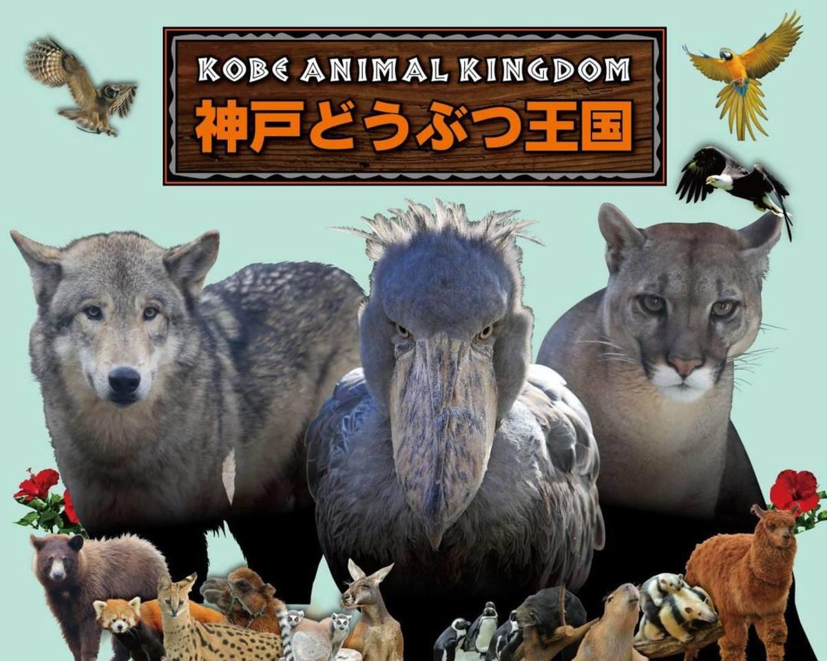 全天候型対応 花と人と動物のふれあい共生パーク...神戸ポートアイランドの「神戸どうぶつ王国」