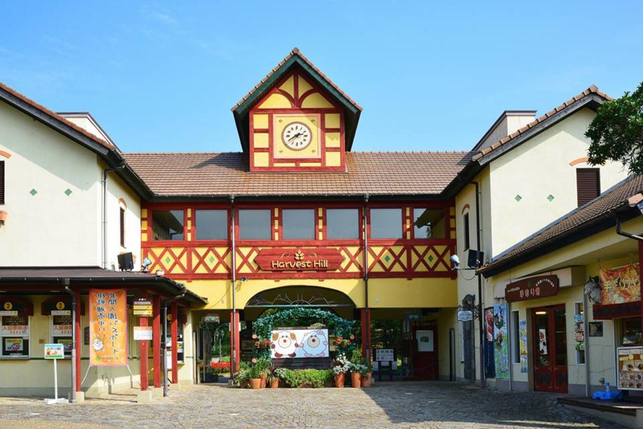 堺・緑のミュージアム...大阪府堺市南区鉢ヶ峯寺の「ハーベストの丘」