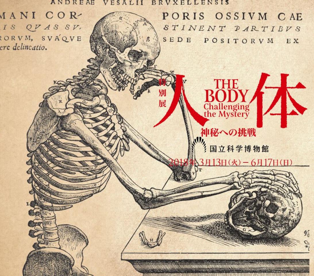 特別展「人体 ー神秘への挑戦ー」