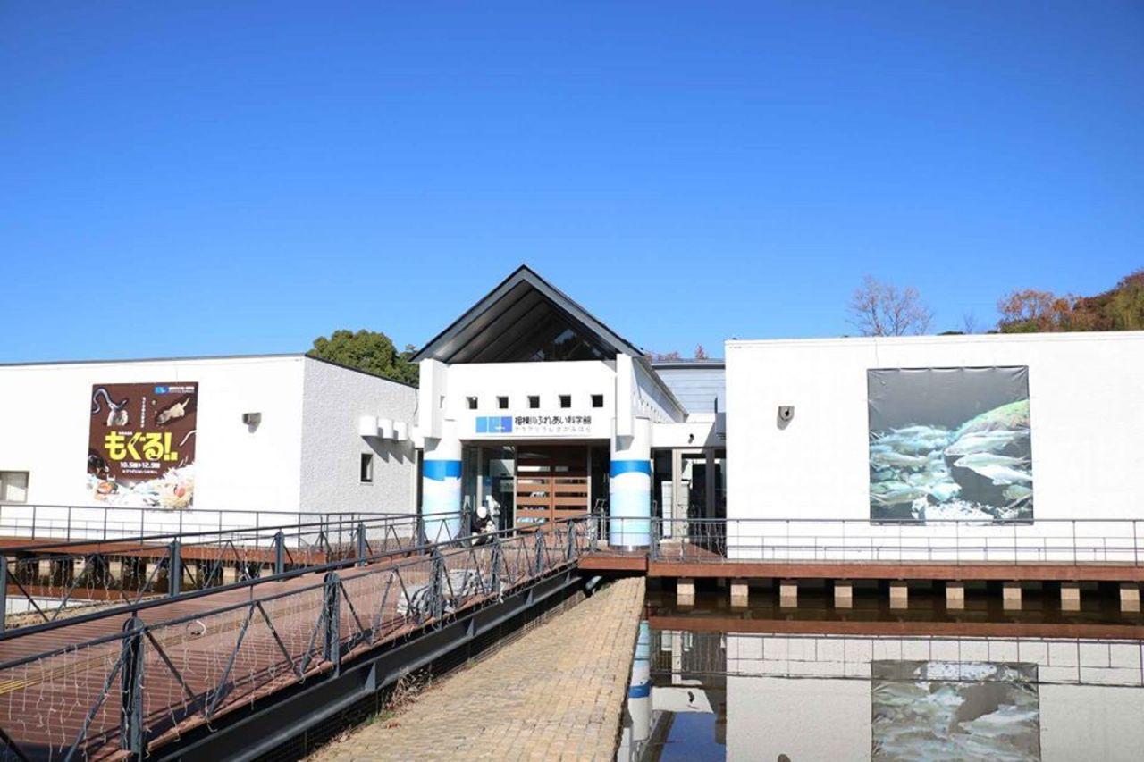 子どもから大人まで家族で楽しめる科学館...神奈川県相模原市中央区の「相模川ふれあい科学館」