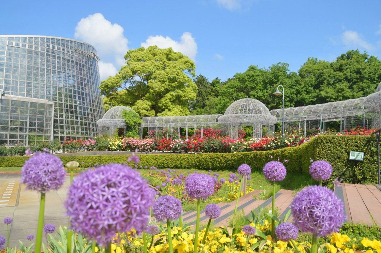 一年中花とみどりが楽しめる公園...神奈川県小田原市久野の「小田原フラワーガーデン」