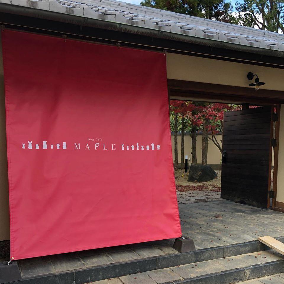 愛犬家の集うカフェ。。奈良県北葛城郡河合町に『ドッグカフェメイプル』12/12~プレオープン
