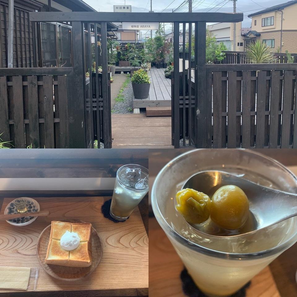 植物屋なのに…カフェが利用できる?! 八戸市小中野「植物屋ARAYA」