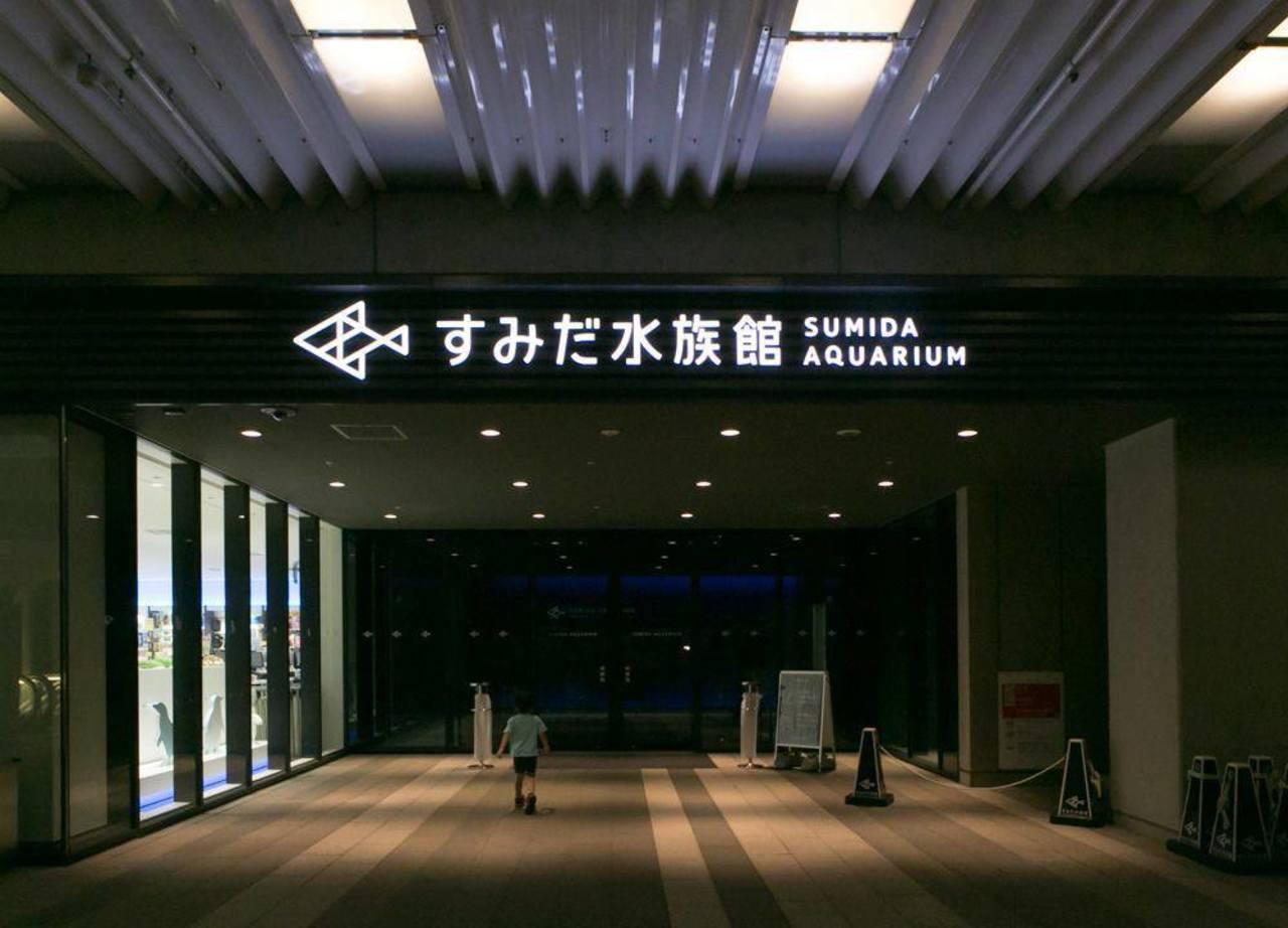 東京スカイツリーの水族館...東京都墨田区押上1丁目の「すみだ水族館」