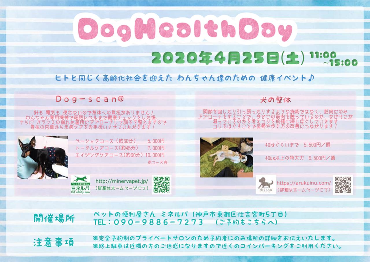 Dog Health Day
