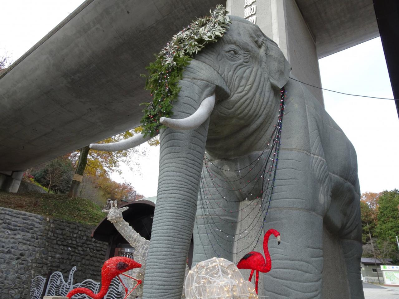 上野動物園等と並び日本有数の動物園...東京都日野市程久保の「多摩動物公園」