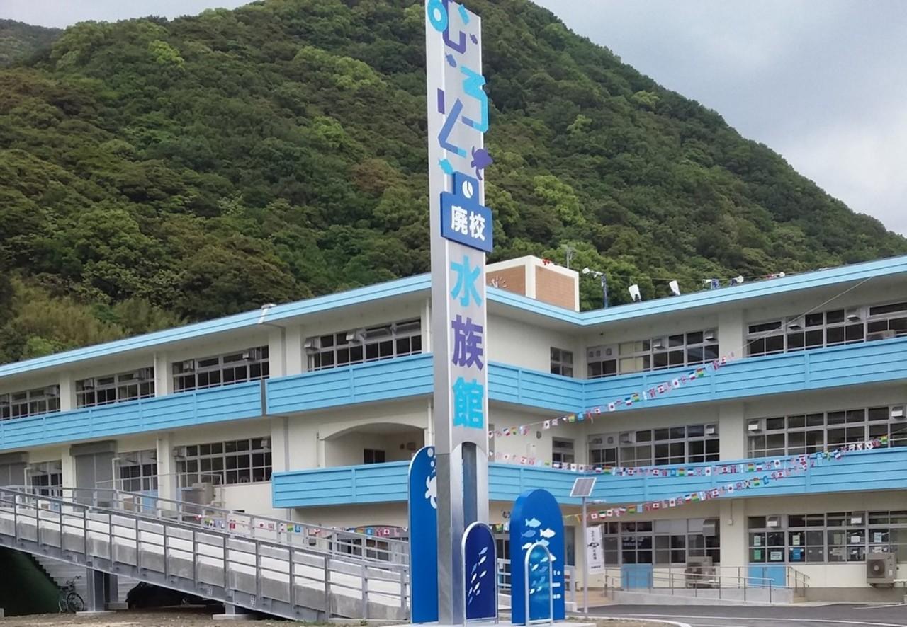 旧椎名小学校を改修した水族館...高知県室戸市室戸岬町の「むろと廃校水族館」