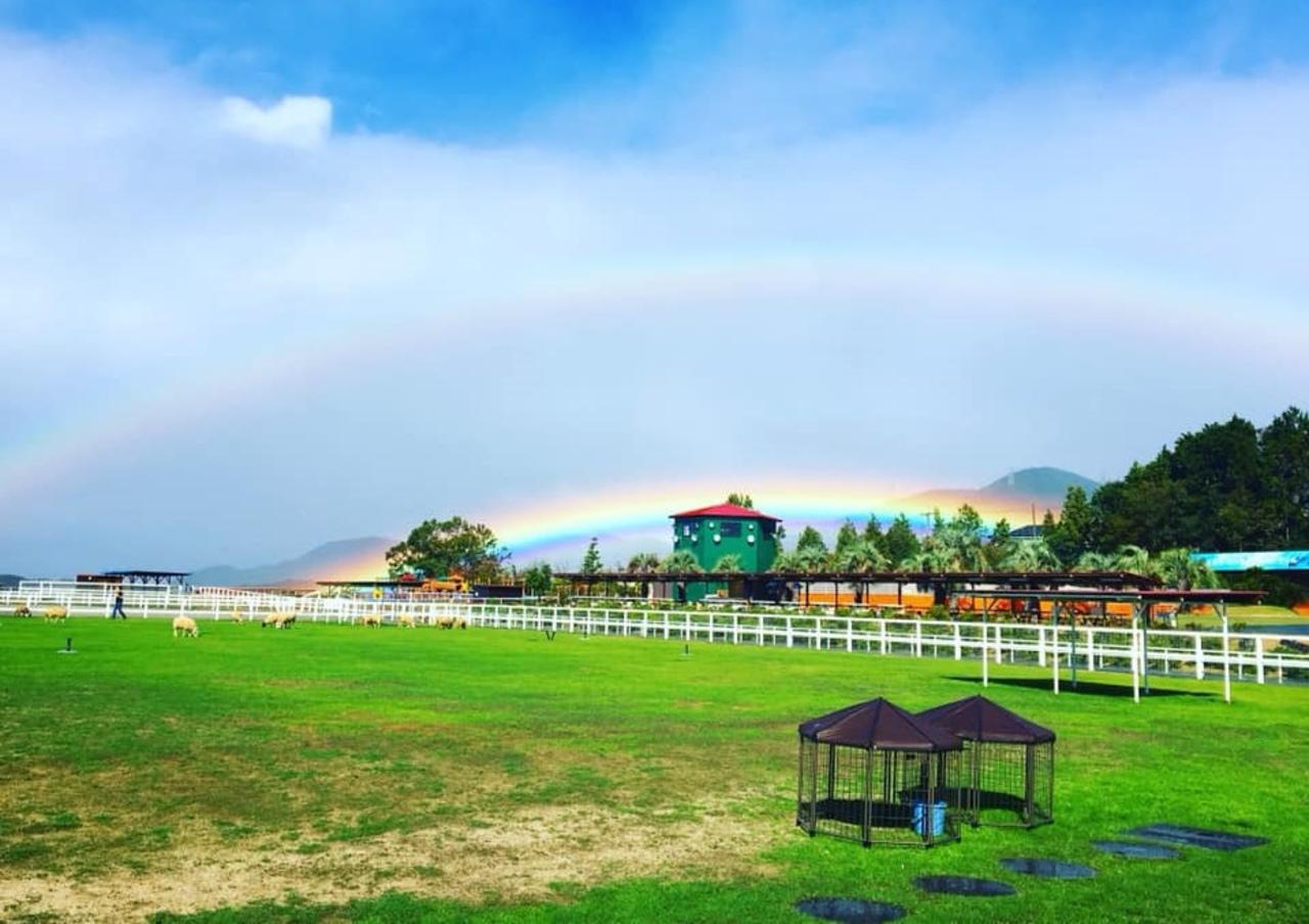 大阪府南部のふれあい観光牧場...大阪府南河内郡河南町大字白木の「ワールド牧場」