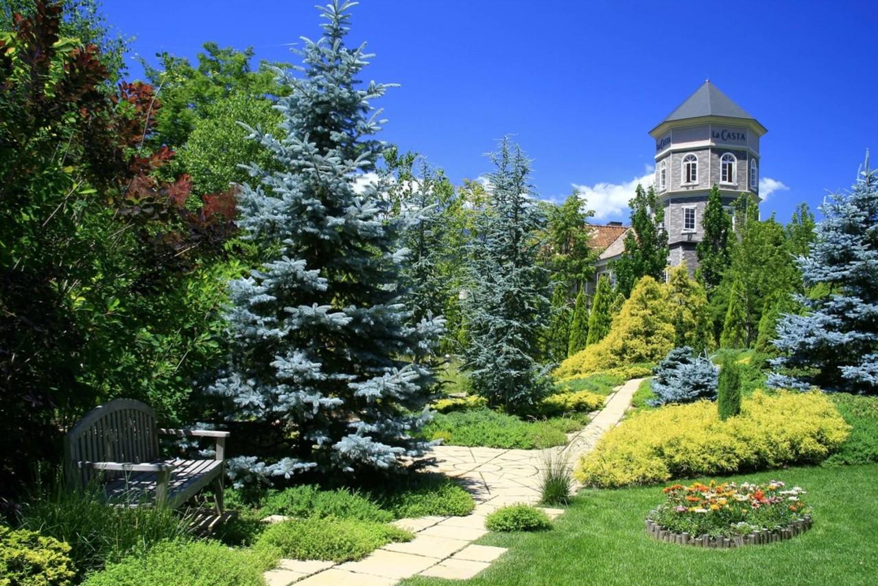 美と癒しの予約制ガーデン...長野県大町市常盤の「ラ・カスタ ナチュラル ヒーリング ガーデン」