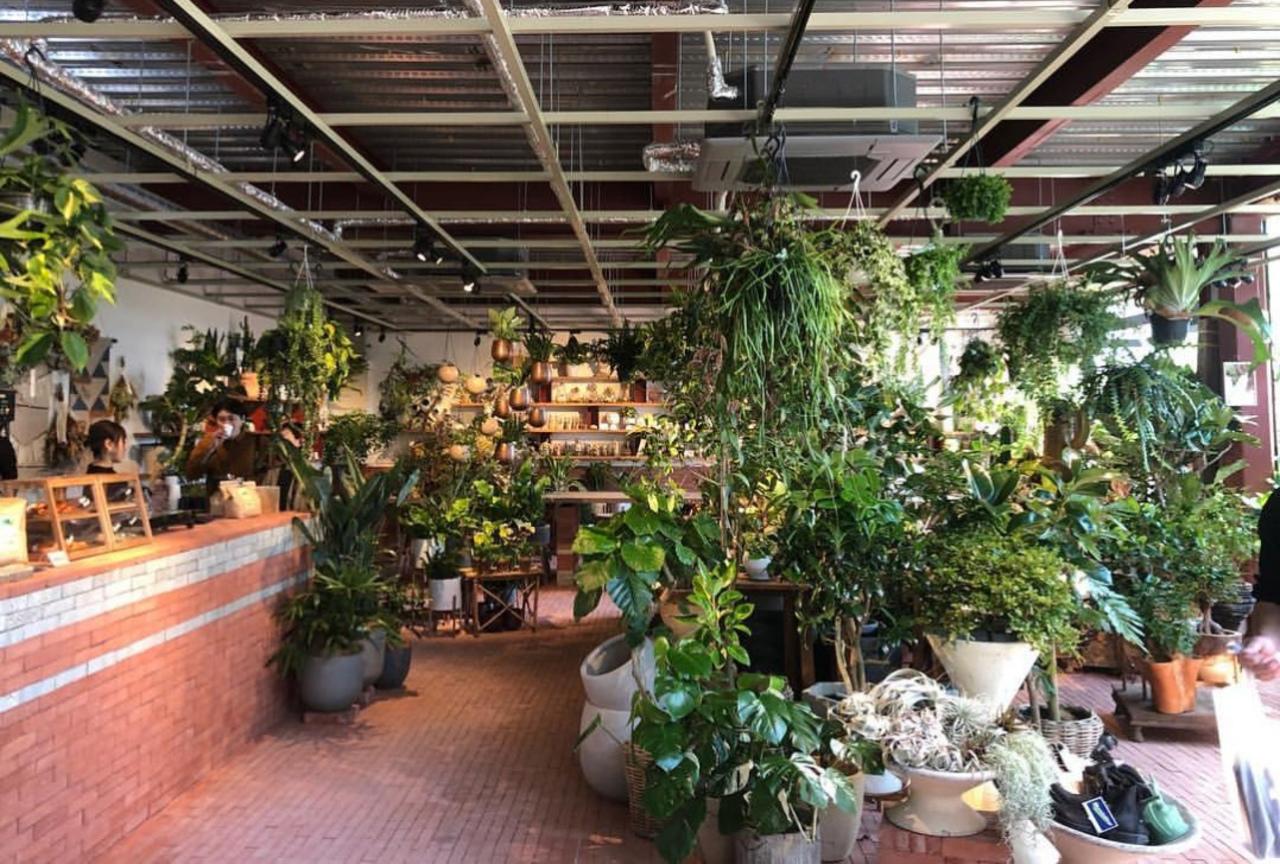 神戸市中央区北野町のグリーンズファームス内にカフェ『グラウンズ』オープン