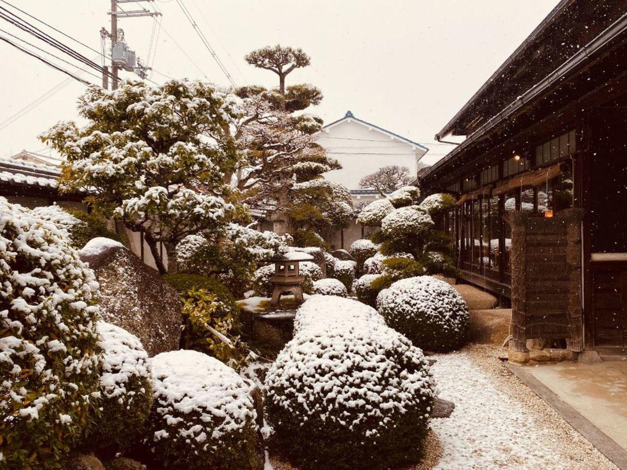 昨日は、久しぶりに奈良県香芝市も雪景色に。。。