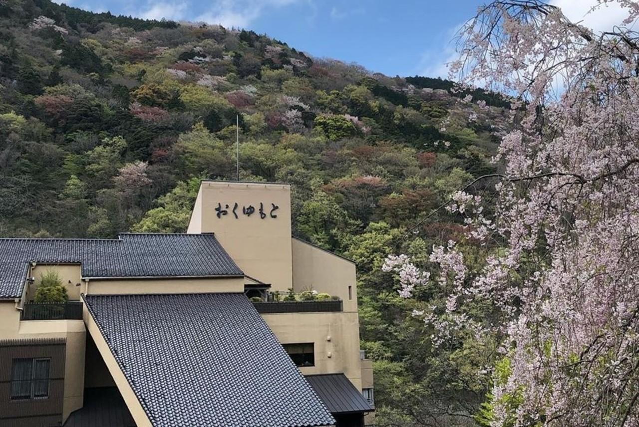 箱根湯本温泉の旅館『ホテルおくゆもと』
