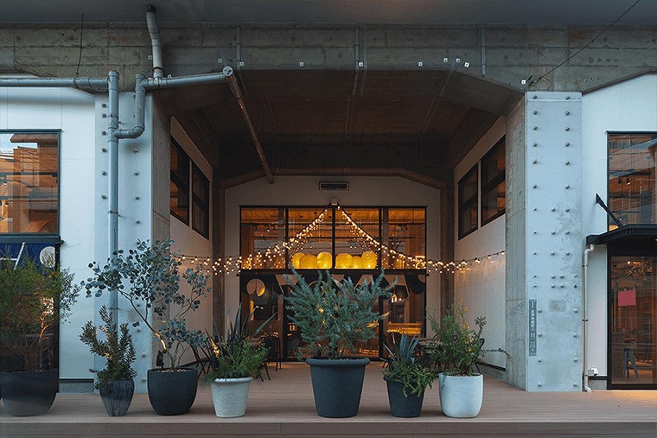吉祥寺駅近く高架下のカフェゼノン隣りに「ゼノンサカバ」11月28日グランドオープン!