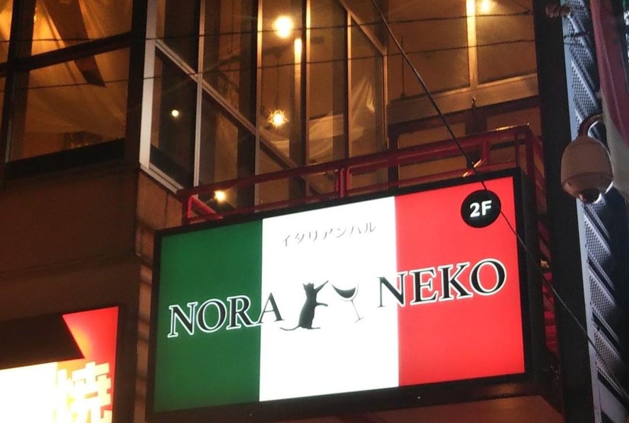 イタリアンバル...東京都杉並区高円寺北2丁目に「ノラネコ」が3/5よりプレオープンのようです。