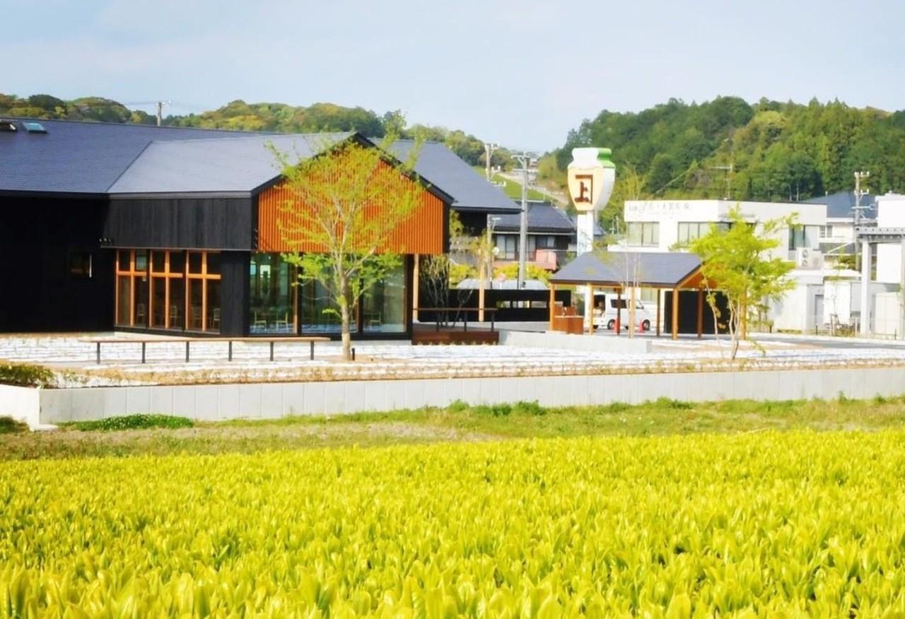 日本茶カフェ&ショップ...静岡県掛川市上内田に「茶の庭」本日オープン