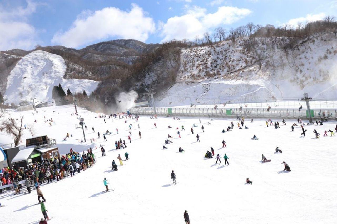 関西最大級のスケールを誇る...滋賀県米原市甲津原の「グランスノー奥伊吹」