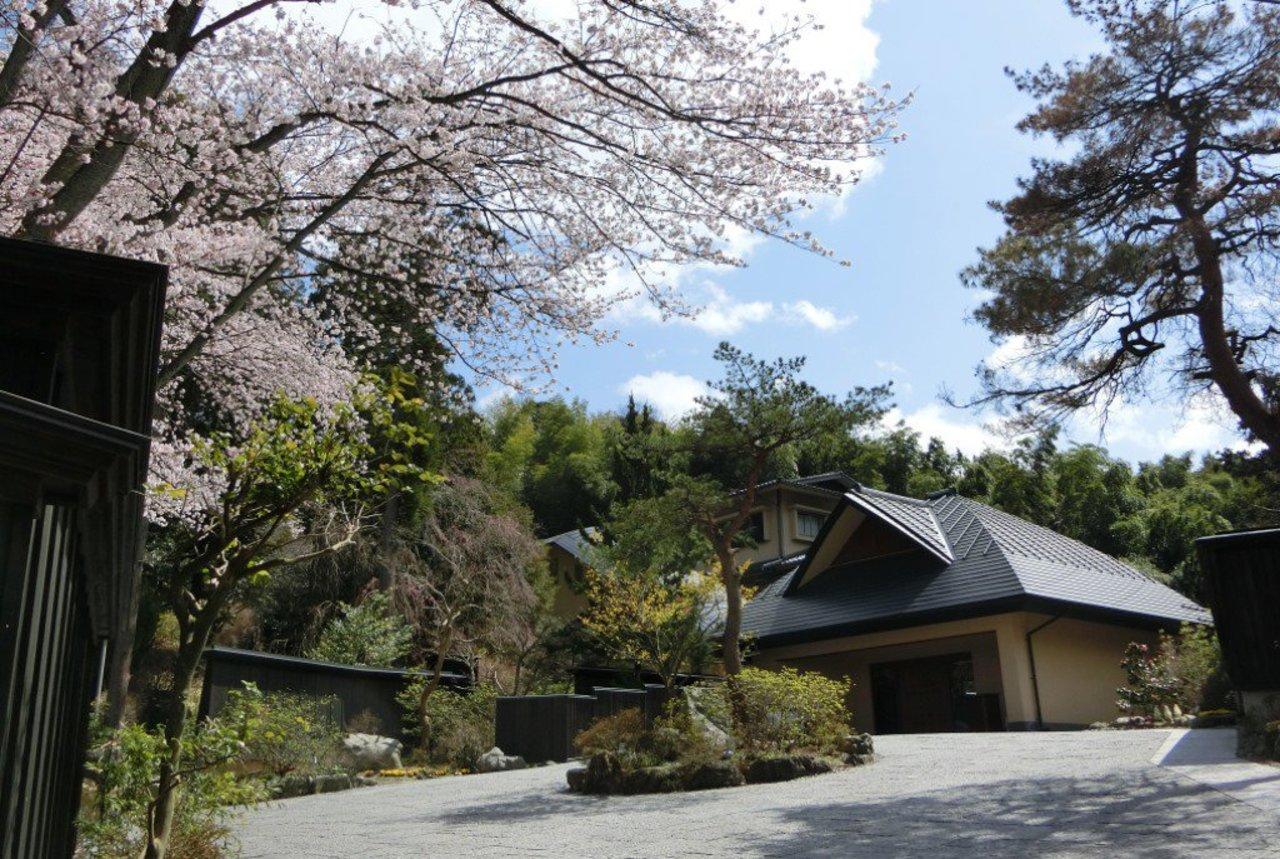 加賀山代温泉の宿『森の栖リゾート&スパ』