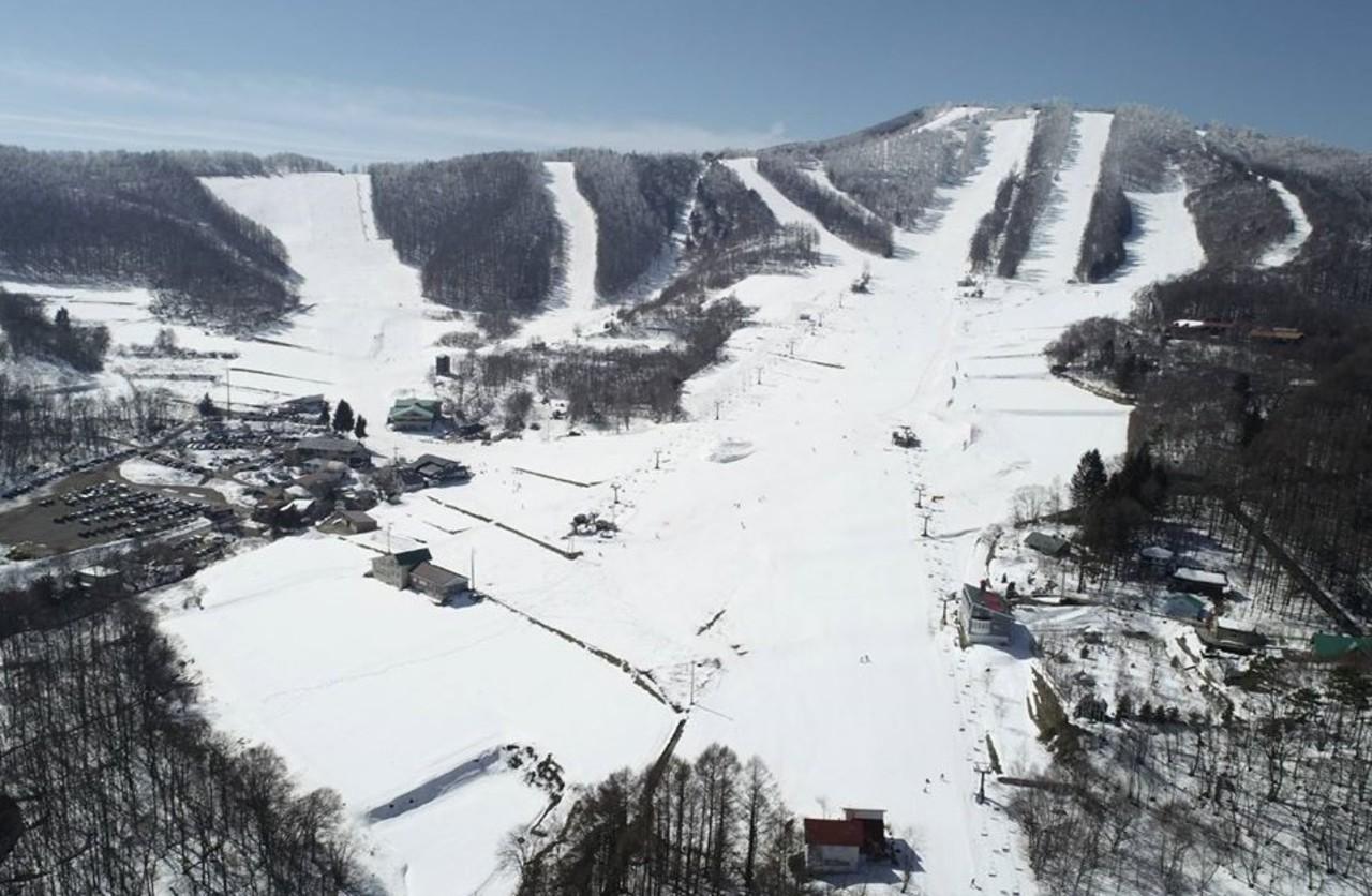 人工降雪でいつでも最高の圧雪バーン...長野県上田市菅平高原の「菅平高原パインビークスキー場」