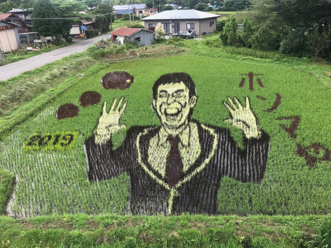 青森県三戸郡階上町 田んぼアート 2019