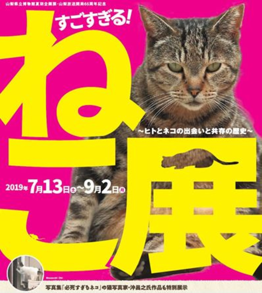 すごすぎる! ねこ展 ~ヒトとネコの出会いと共存の歴史~