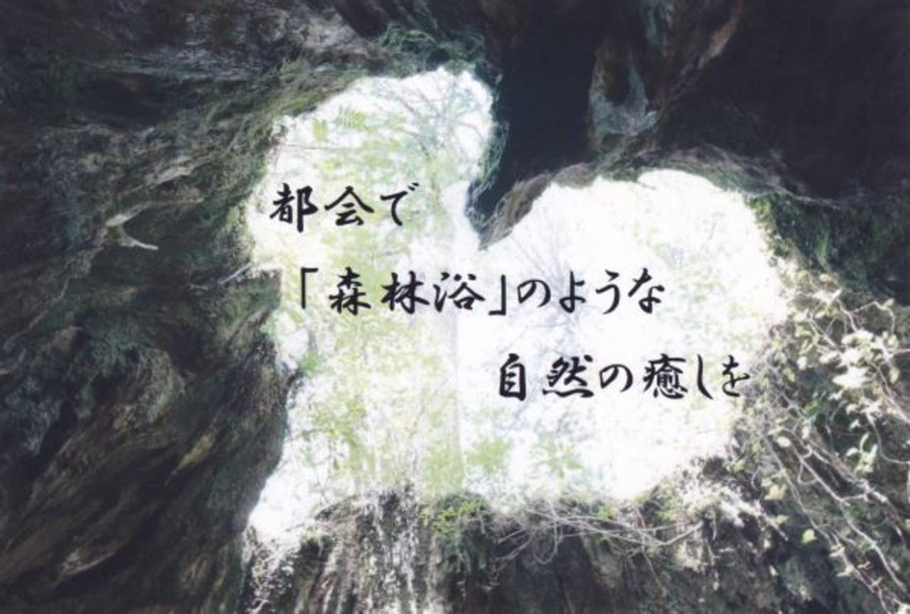 14101癒しの杜マッサージ院