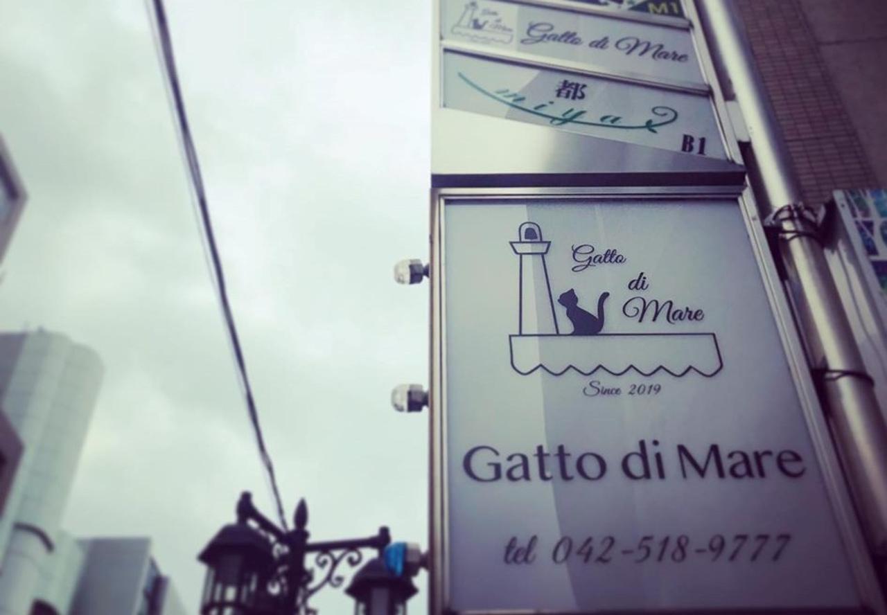 イタリアン&和食材の融合...東京都立川市柴崎町2丁目に「ガットディマーレ」オープン