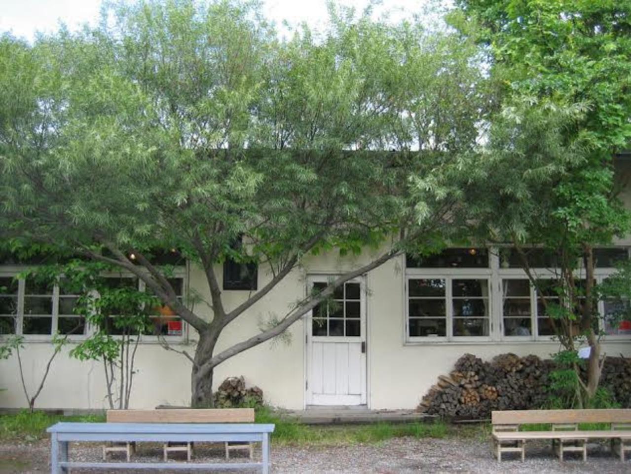 奈良の代表的なカフェ...奈良市法蓮町の『くるみの木 一条店』