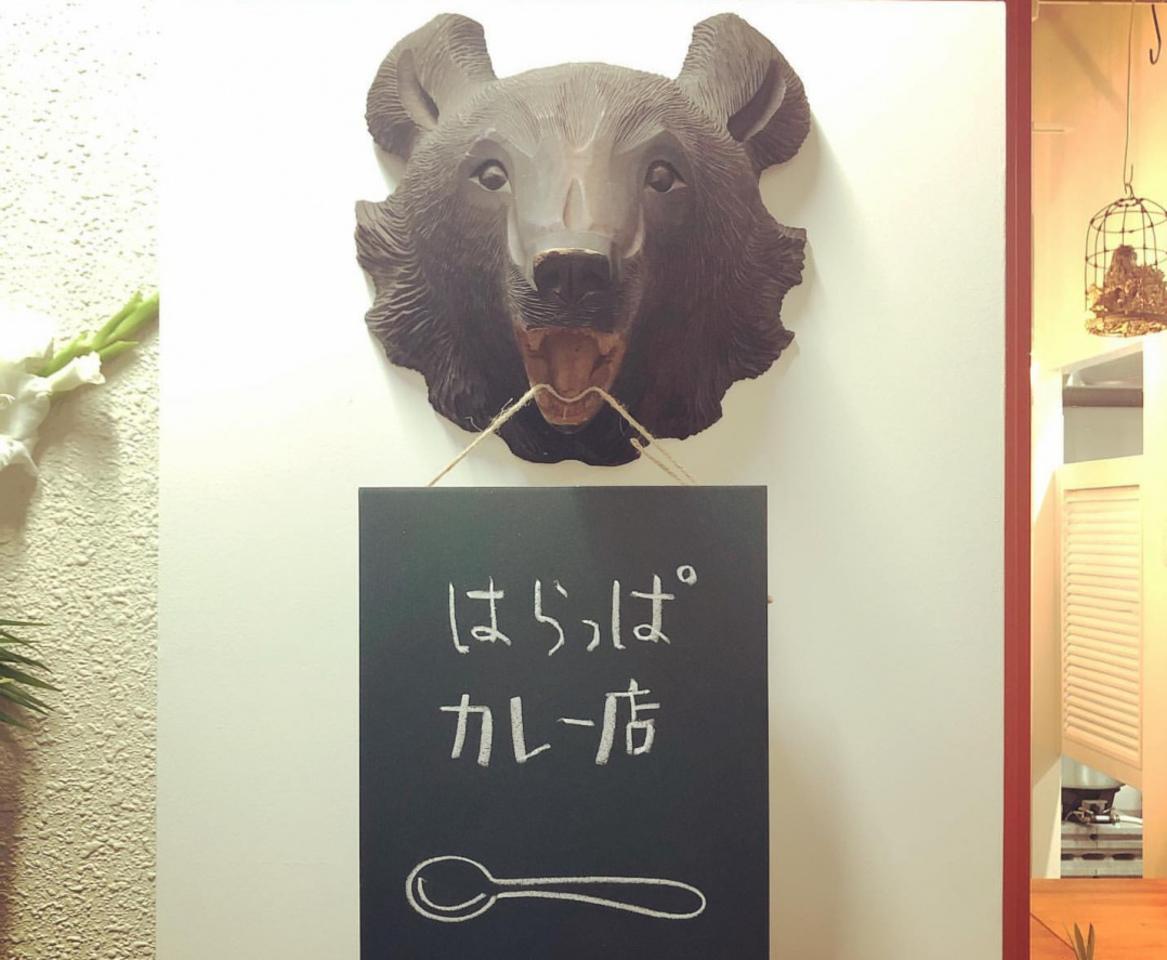 辛くないスパイスカレー...札幌市中央区南1条西11丁目に『はらっぱカレー店』本日オープン