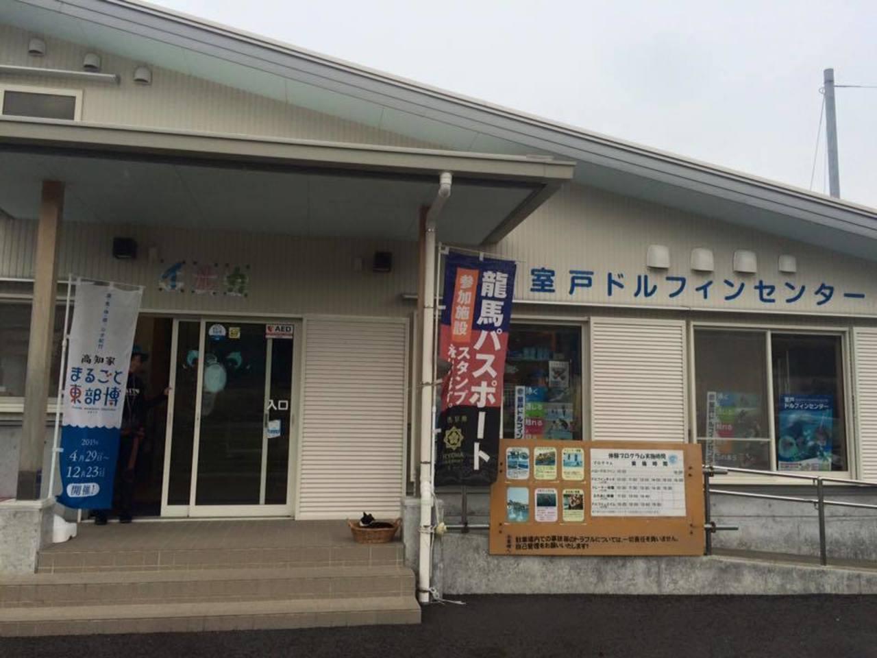 人とイルカとが触れ合う...高知県室戸市室戸岬町字鯨浜の「室戸ドルフィンセンター」