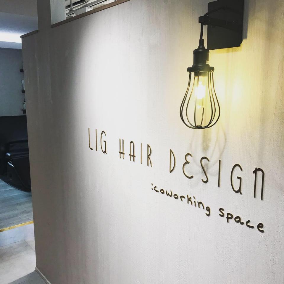 13112LIG hair design
