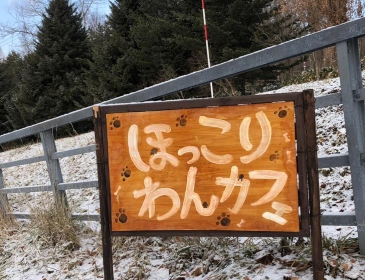 北海道札幌市南区北ノ沢4丁目に「ほっこりわんカフェ」がR2.1/3にグランドオープンされるようです。
