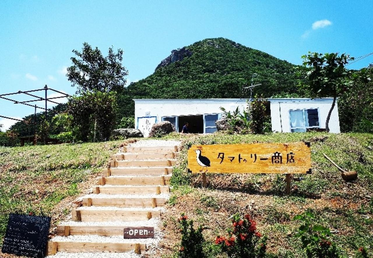 石垣島に『ぱいぬしま氷菓 タマトゥリー商店』オープン。