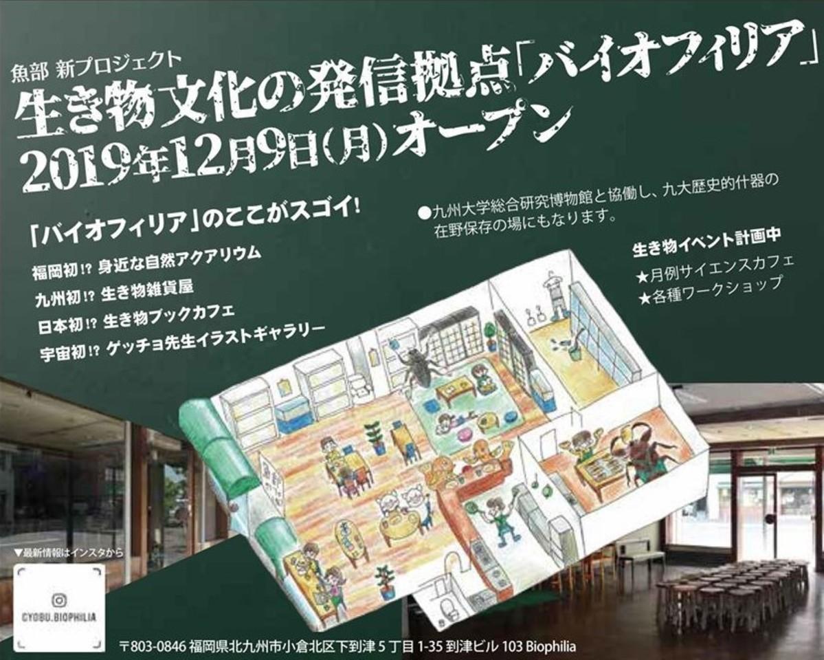 福岡県北九州市小倉北区下到津に生き物文化発信拠点「バイオフィリア」が本日オープンのようです。