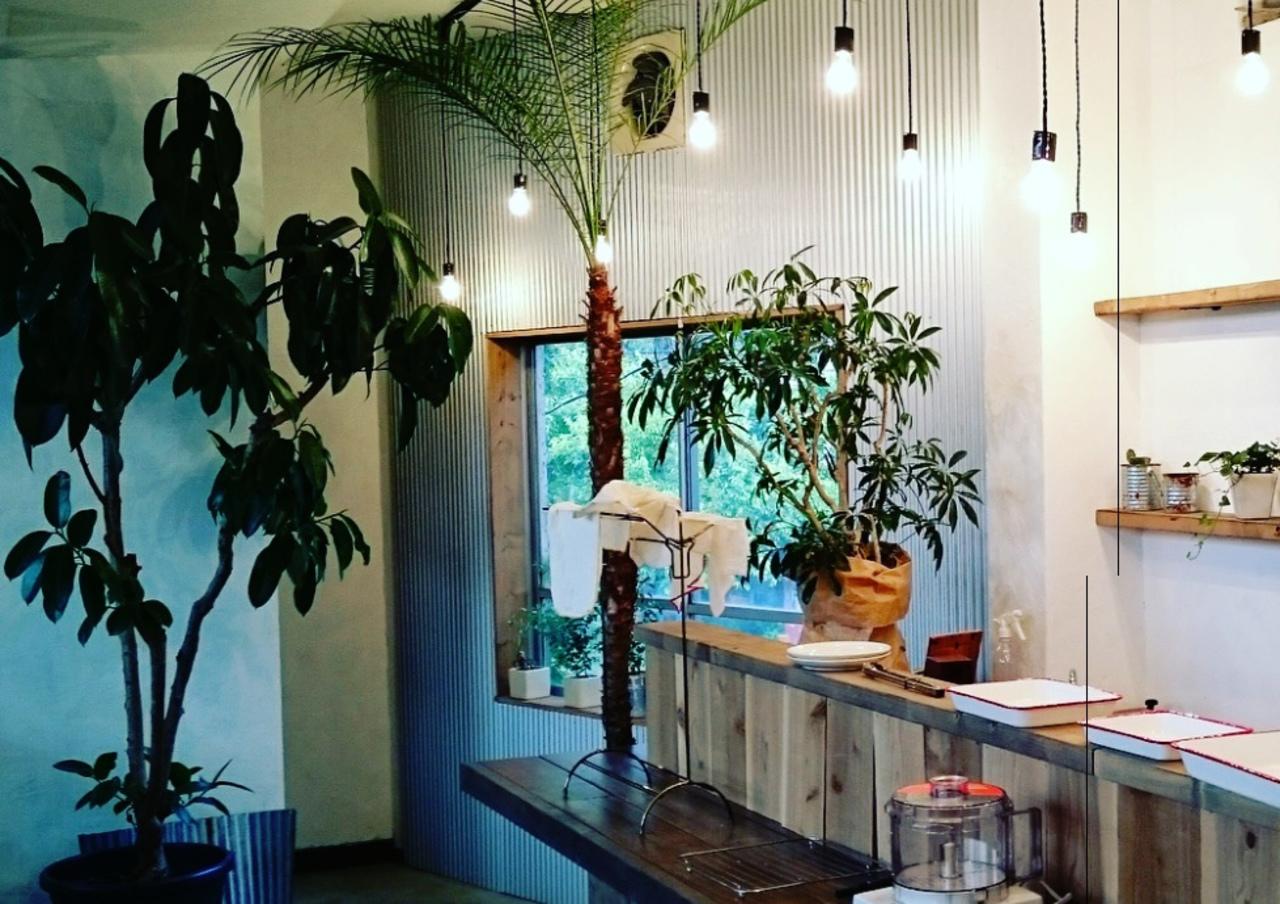徳島の美馬郡つるぎ町半田中藪に「Kitchencafe Flat」今月オープンされたようです。