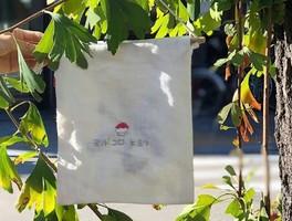 京都市下京区柿本町にかき氷のお店「ヨリドコロヒヨリ」が昨日オープンされたようです。